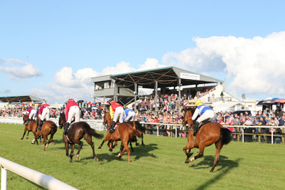 BELLEWSTOWN THURS 2 JULY 2015  PICTURE: CAROLINE NORRIS     THE FIELD AT AN EARLY STAGE IN THE SEAMUS MULVANEY CROCKAFOTHA HANDICAP HURDLE WON BY BE SEEING YOU