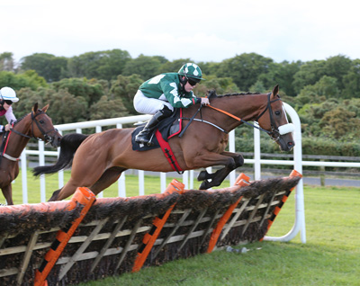 BELLEWSTOWN THURS 2 JULY 2015  PICTURE: CAROLINE NORRIS     MOONMEISTER RIDDEN BY LUKE DEMPSEY, WINNER, AT AN EARLY STAGE IN THE WINTERGRASS NOVICE HURDLE
