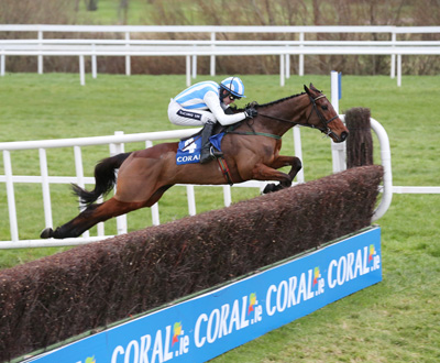 LEOPARDSTOWN SUN 17 JANUARY 2016  PICTURE: CAROLINE NORRIS    KILLULTAGH VIC RIDDEN BY RUBY WALSH JUMPING THE LAST FENCE TO WIN THE MONEY BACK ON FALLERS AT CORAL.IE NOVICE STEEPLECHASE