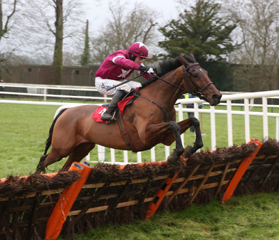 GOWRAN PARK THURS 21 JANUARY 2016  PICTURE: CAROLINE NORRIS      ALPHA DES OBEAUX RIDDEN BRYAN COOPER JUMPING THE LAST TO WIN THE JOHN MULHERN GALMOY HURDLE