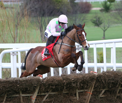 LEOPARDSTOWN SUN 24 JANUARY 2016  PICTURE: CAROLINE NORRIS    FAUGHEEN RIDDEN BY RUBY WALSH, WINNER, AT AN EARLY STAGE IN THE BHP INSURANCES IRISH CHAMPION HURDLE