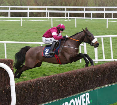 LEOPARDSTOWN TUES 29 DECEMBER 2015  PICTURE: CAROLINE NORRIS     NO MORE HEROES RIDDEN BY BRYAN COOPER JUMPING THE LAST FENCE IN THE NEVILLE HOTELS NOVICE STEEPLECHASE